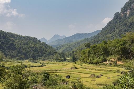 Beste reisperiode voor het noorden van Vietnam