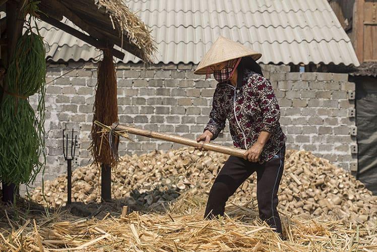 de verwerking van bamboe