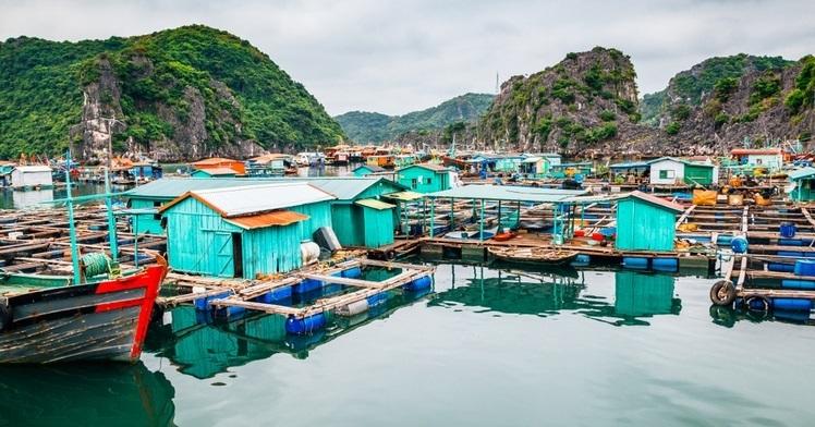 drijvende dorpjes bai tu long bay