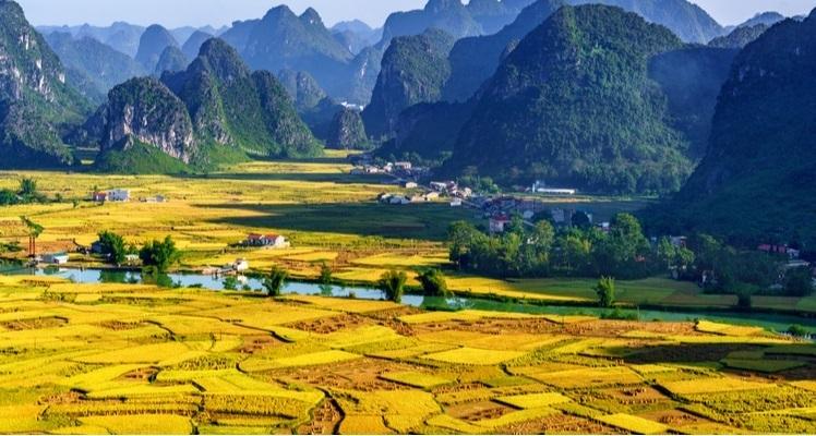 Cao Bang tijdens de oogst